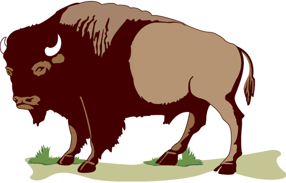 576x368 Buffalo Bill Clipart Cute