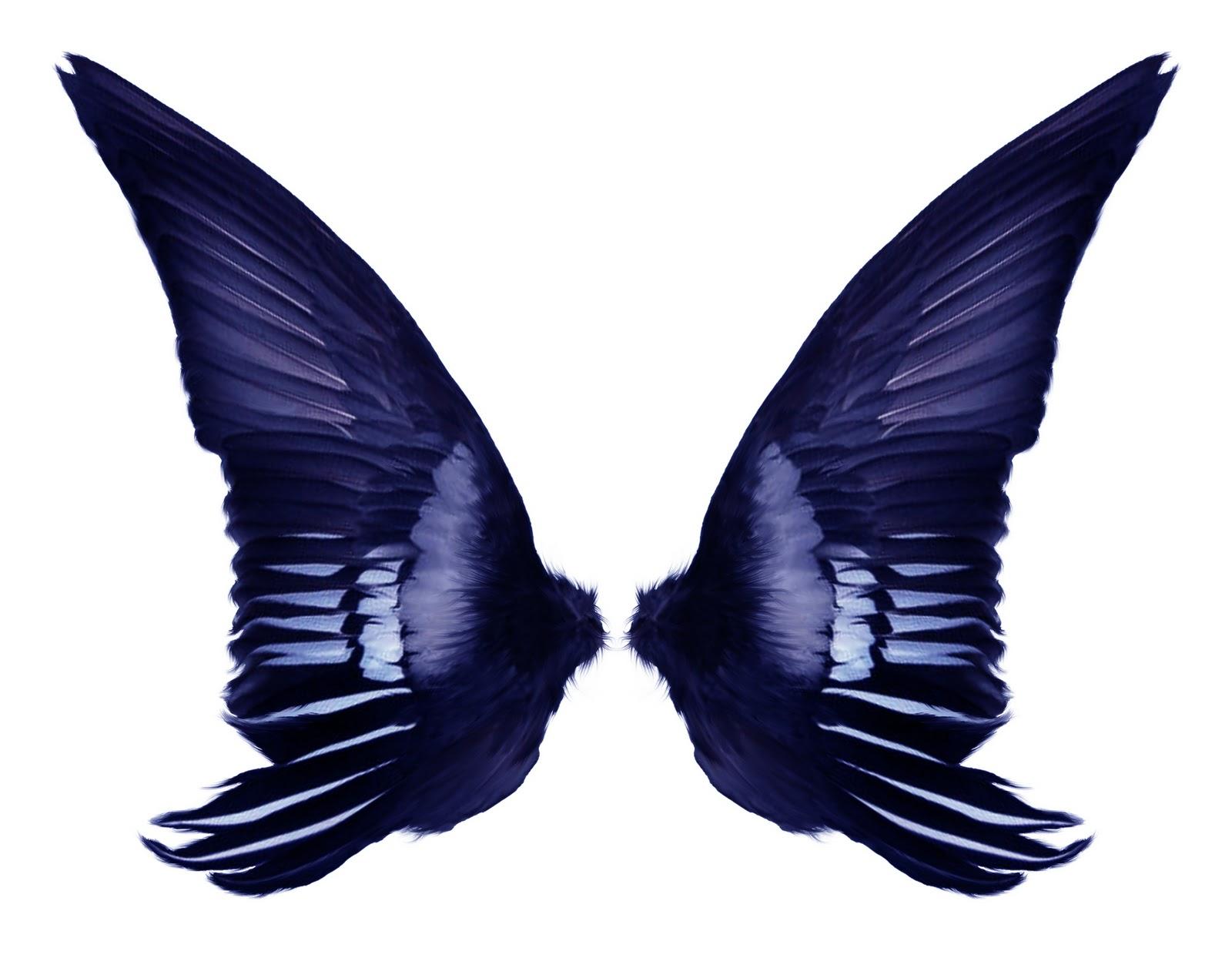 1600x1270 Fairy Wings Template Clipart Panda