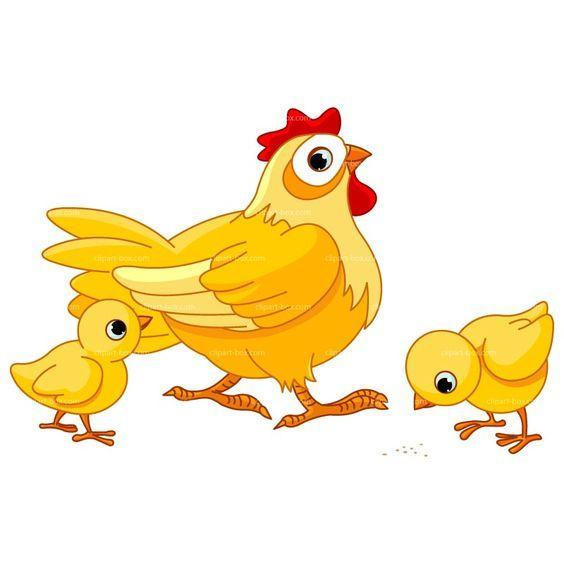 564x564 Cartoon Chicken Clip Art Clipart Chicken Farm Royalty Free