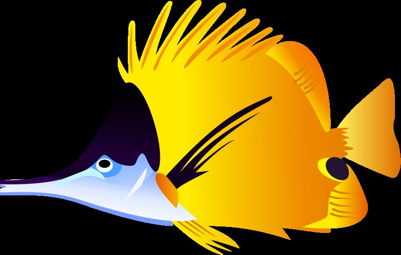 800x509 Fish Clip Art Amp Clipart Images