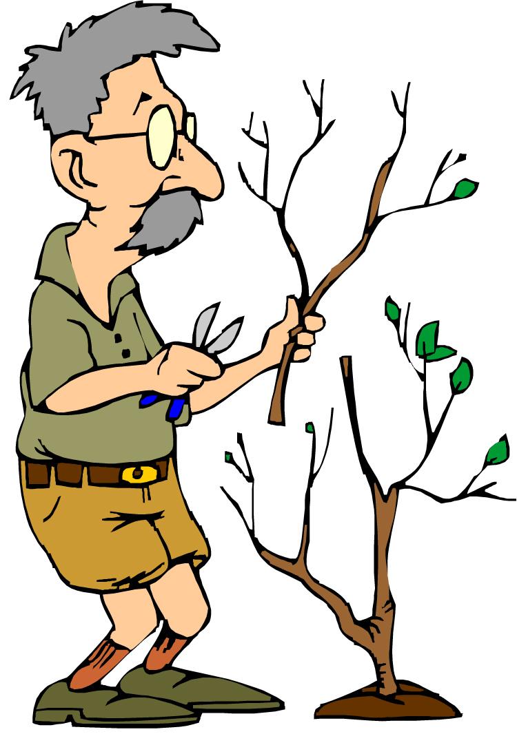 750x1066 Tree Service Cliparts