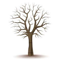 236x236 Beautiful Tree Clipart Design, Family Tree, Clipart Tall Tree