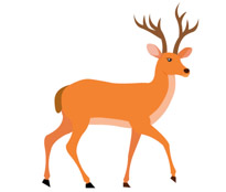 205x174 Clip Art Of Deer Clipart Collection