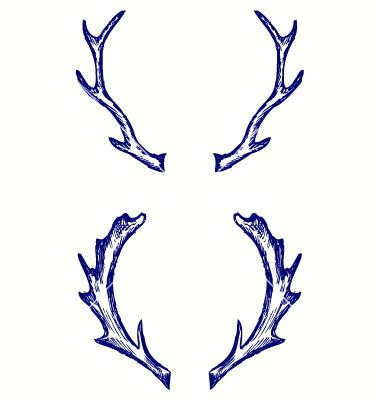 380x400 Deer Antler Clip Art Free Top Deer Free Spot Home Improvement