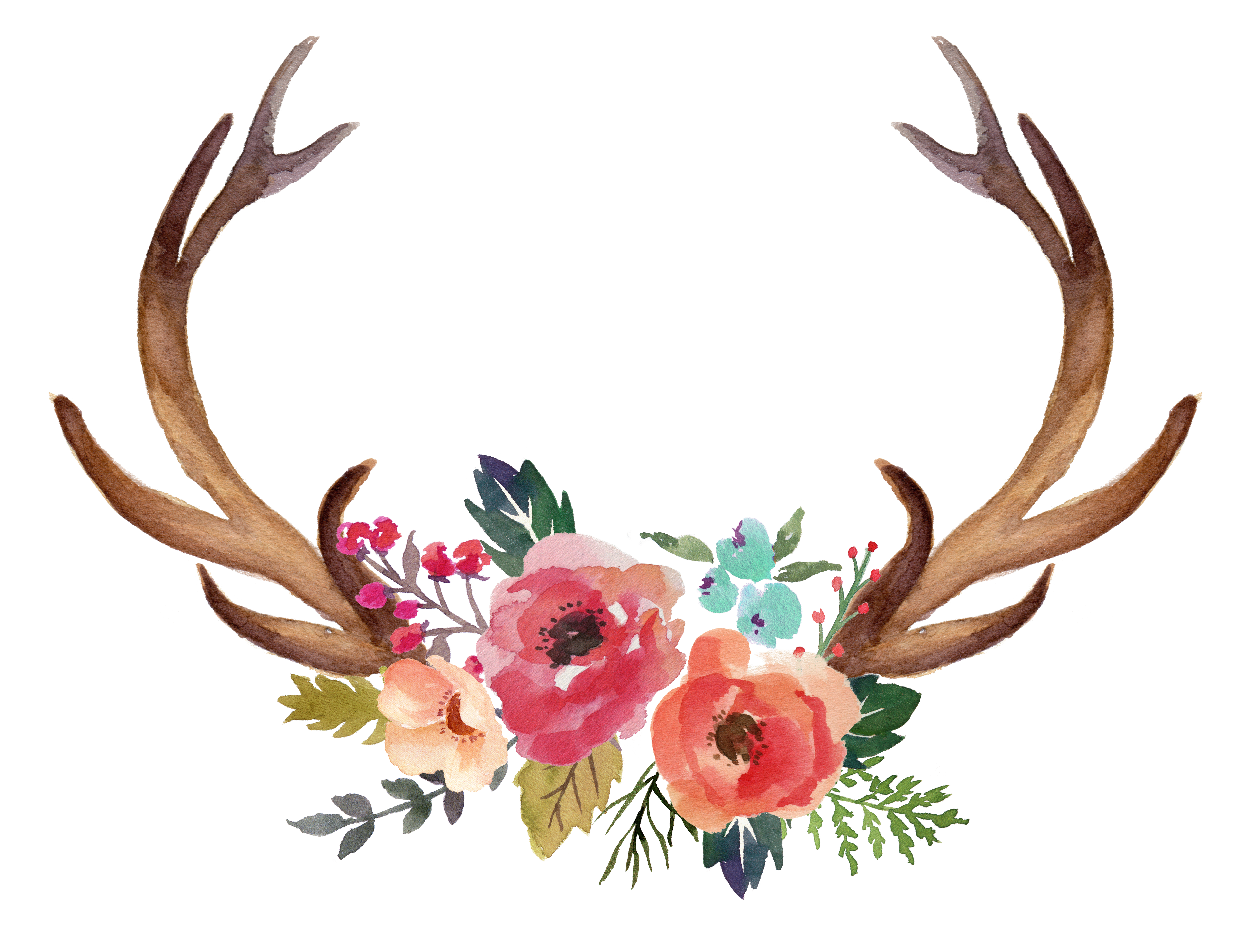 8993x6807 Deer Antler Moose Flower Clip Art