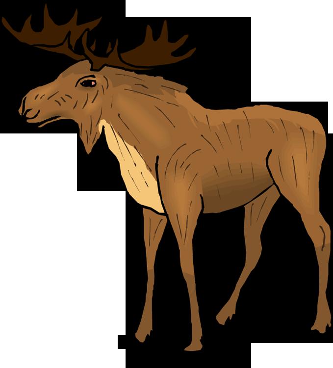679x750 Wildlife Clipart Moose Antler