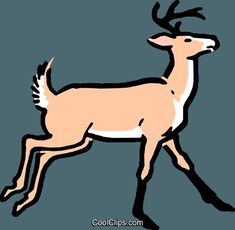 480x470 Cartoon Deer Royalty Free Vector Clip Art Illustration Anim0537