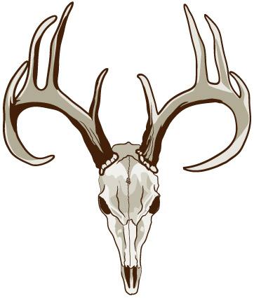 362x425 Deer Skull Clipart Group