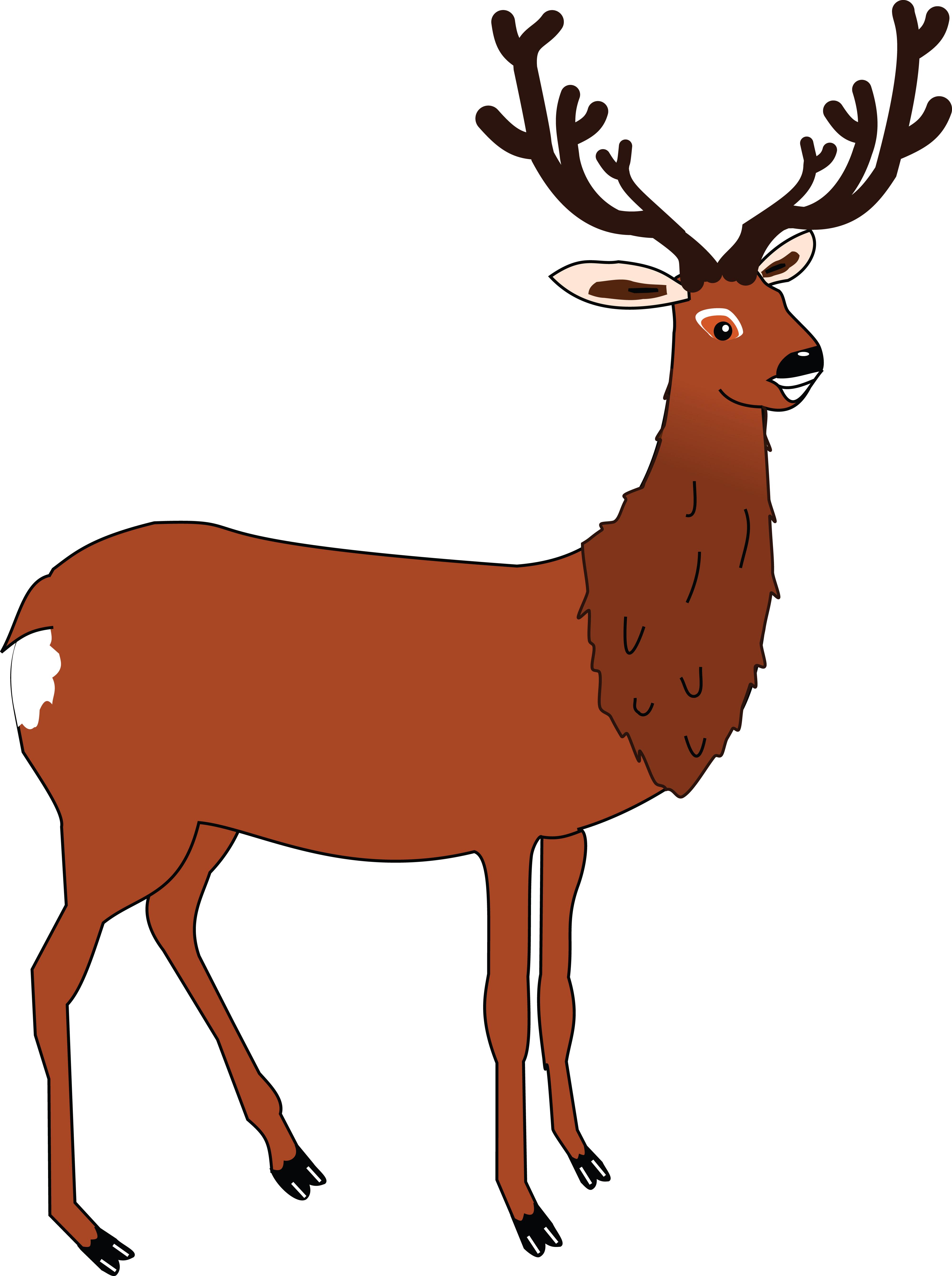 4000x5361 Free Clipart Of A Buck Deer