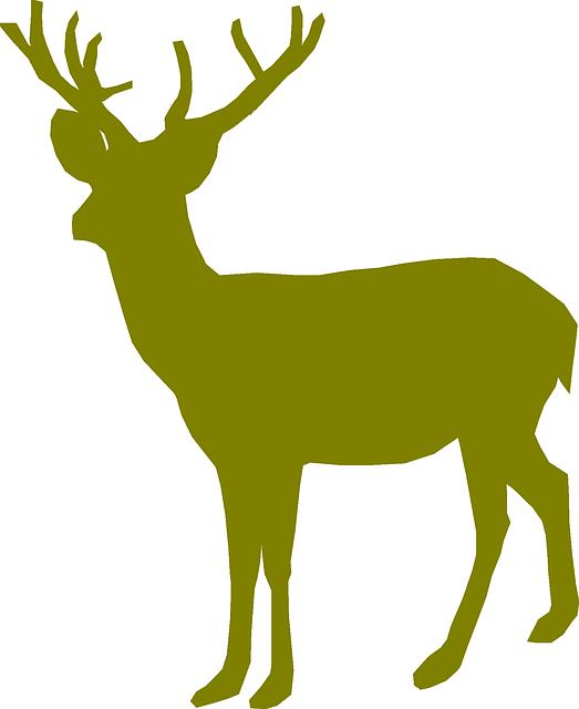 523x640 Free Image On Pixabay
