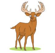 180x173 Elk Clip Art Clipart Collection