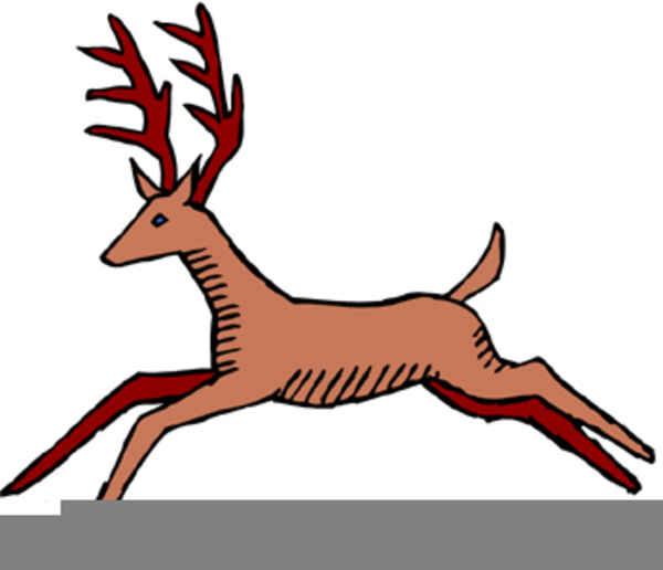 600x516 White Tail Deer Clipart Free Images