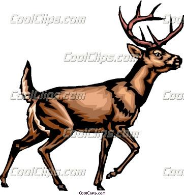 362x383 Whitetail Deer Images Clip Art Whitetail Deer Clipart 37
