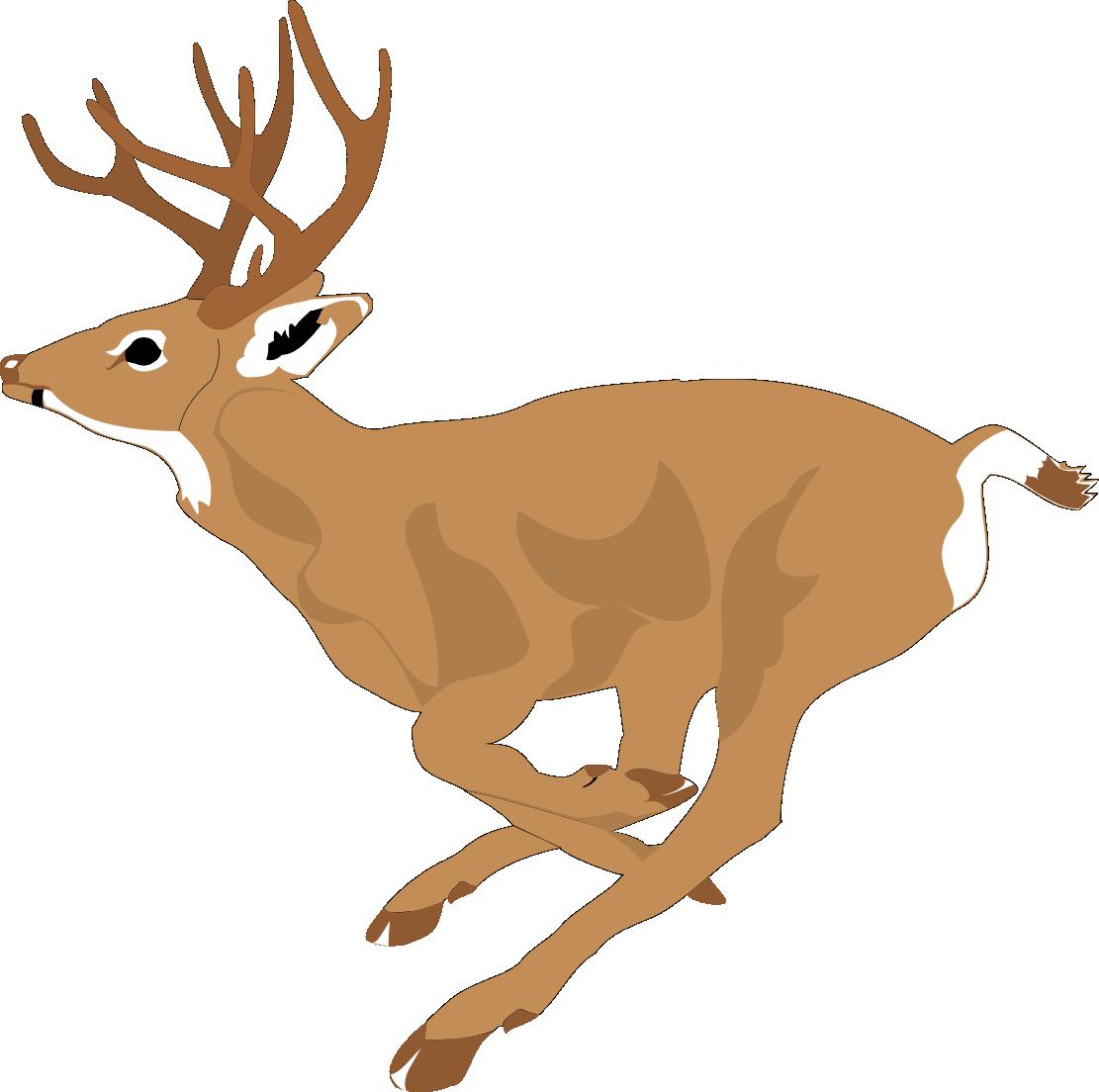 1111x1104 1476 Free Clipart Of A Buck Deer Clip Art Yanhe Clip Art
