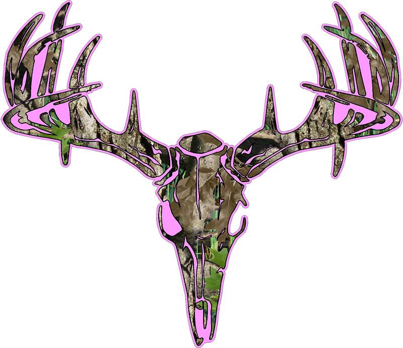 800x692 Best Deer Skull Clip Art
