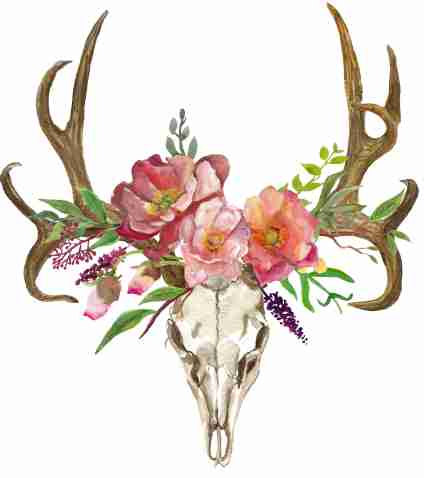 424x478 Deer Skull With Flowers Deer Clipart Bohemian Art Boho Deer Deer