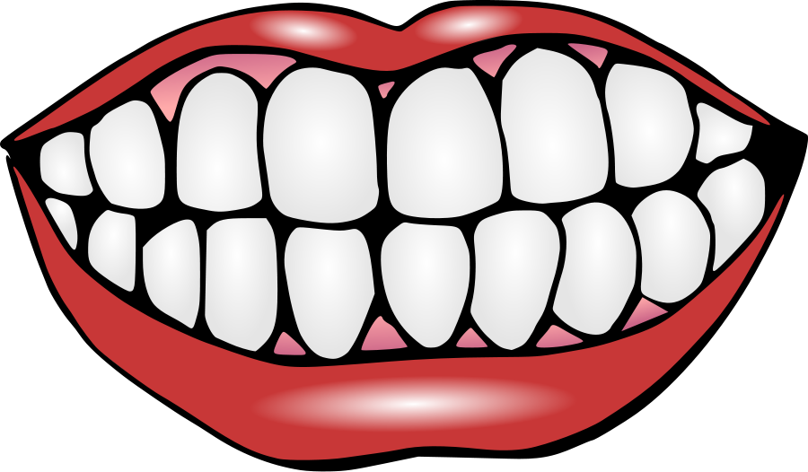 900x526 Mouth And Teeth Clipart