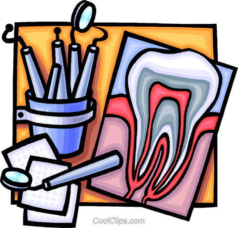 480x460 Cross Section Of A Tooth Royalty Free Vector Clip Art Illustration