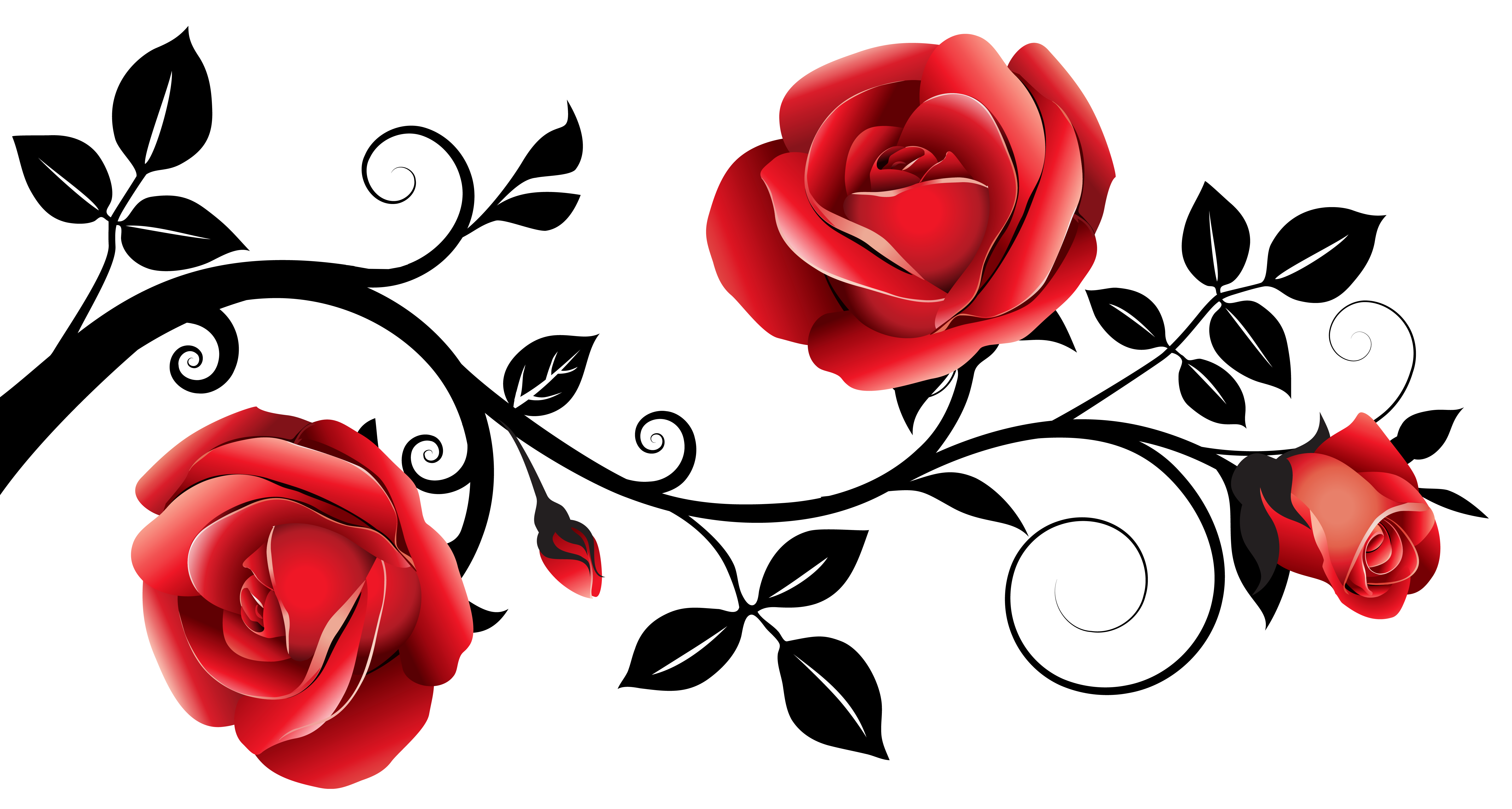 6308x3375 Collection Of Black Clipart Rose High Quality, Free Cliparts