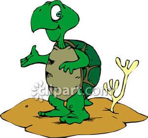300x279 Cartoon Turtle In The Desert