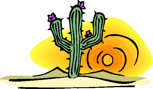 514x299 Desert Habitat Animals And Plants, Habitat, Bird Identification