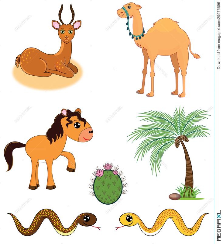 734x800 Set Of Desert Animals Illustration 29978696
