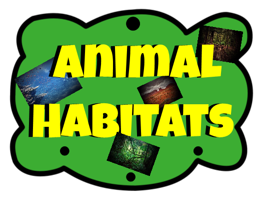 522x403 Animal Habitats Hanging Mobile