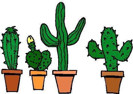 Desert Plants Clipart