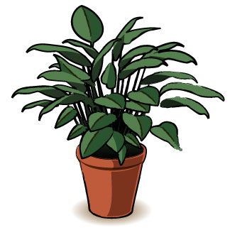 324x324 Collection Of Plants Clipart Pictures High Quality, Free