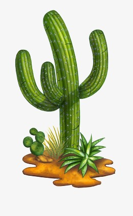 261x424 Desert Plants, Drought, Green, Leaf Png Image And Clipart For Free