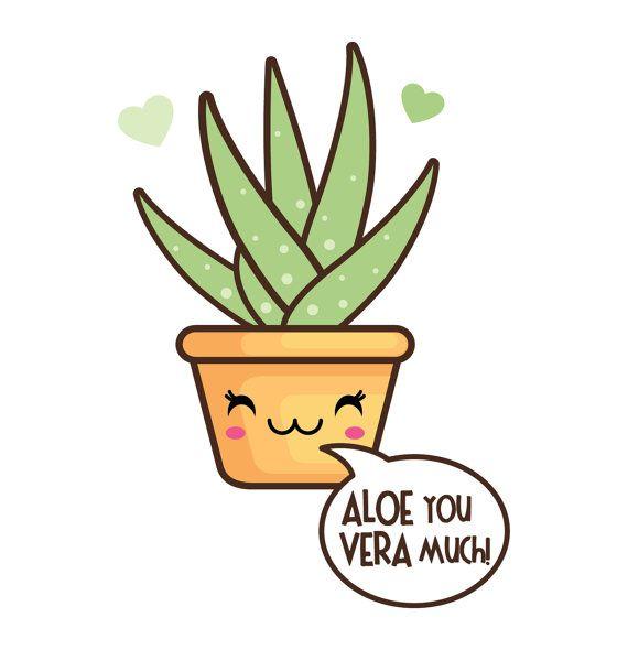 570x590 57 Best Suculove Images On Cactus Plants, Succulents