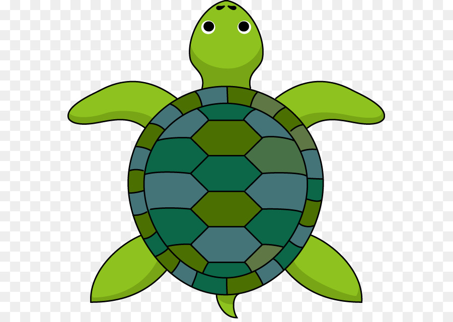 900x640 Turtle The Tortoise And The Hare Clip Art
