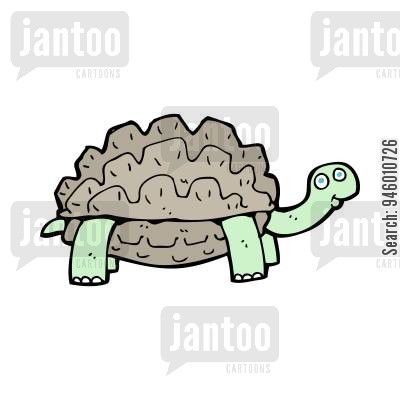 400x400 Testudinidae Cartoons