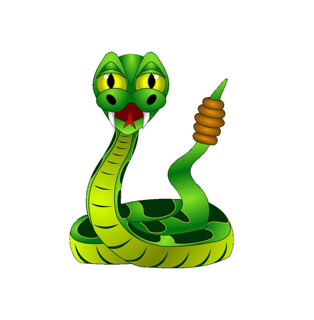 1024x1045 Rattlesnake Clip Art