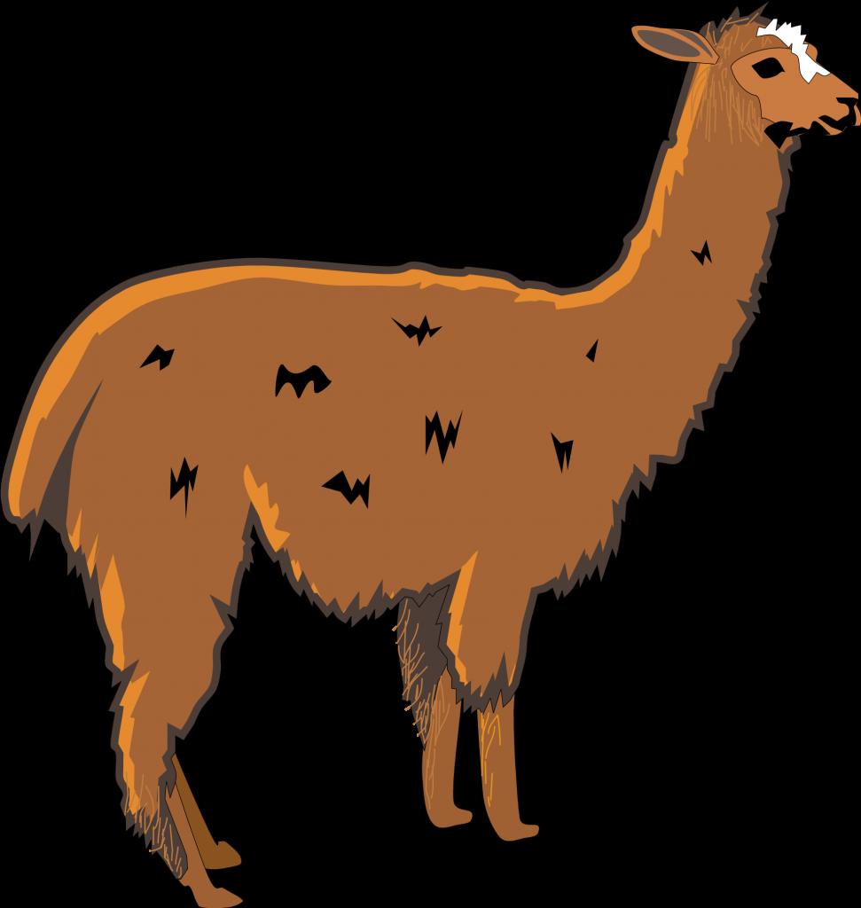 971x1024 Best Llama Clipart