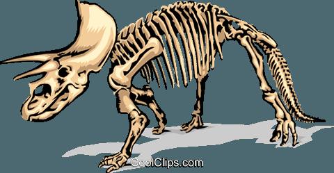 480x249 Dinosaur Bones Royalty Free Vector Clip Art Illustration Anim1380