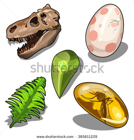450x470 Fossil Clipart Amber