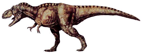 580x222 T Rex Fossil Clip Art