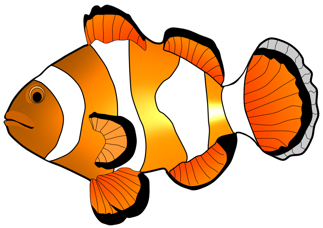 1123x794 Collection Of Nemo Fish Clipart High Quality, Free Cliparts