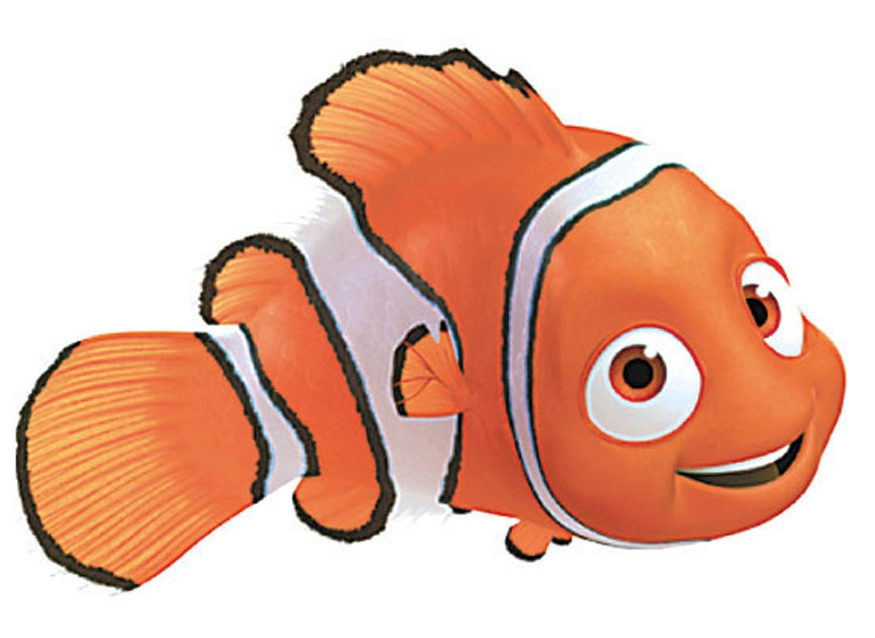 1800x1313 Clipart Nemo Fish Angelfish Pencil And In Color