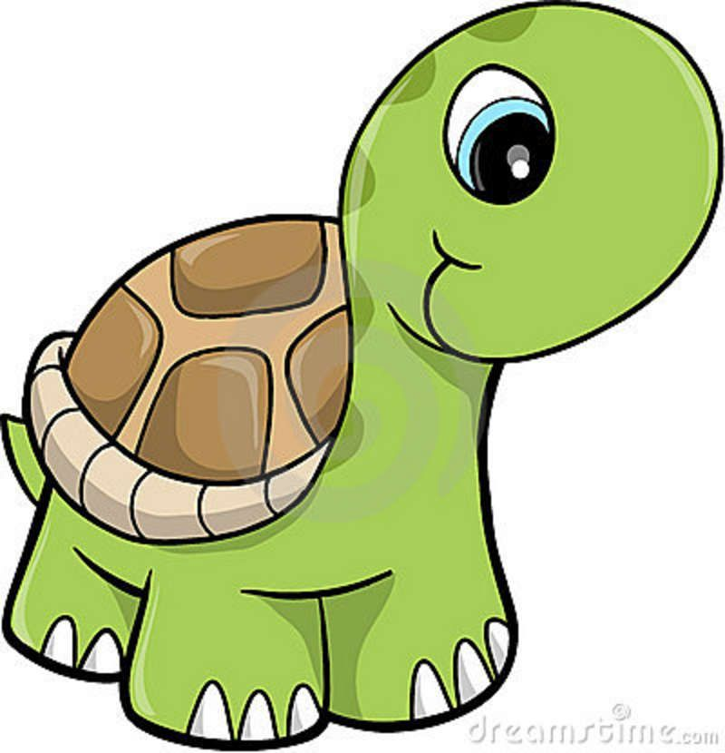 800x830 Free Cute Clip Art Cute Safari Turtle Vector Illustration