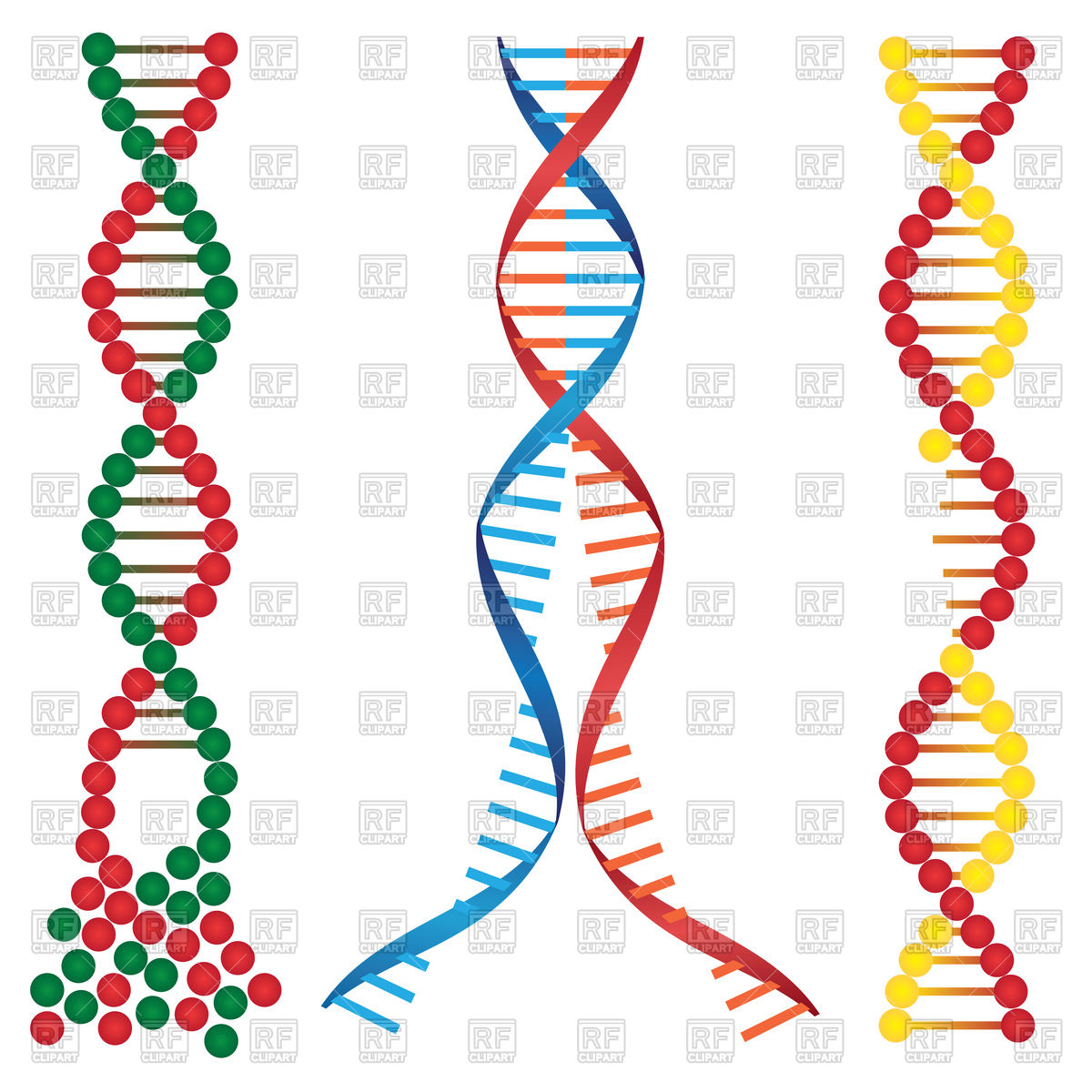 Dna Clipart