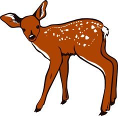 236x232 Filewhite Tailed Doe With Tail Flagged For Danger.jpg Public