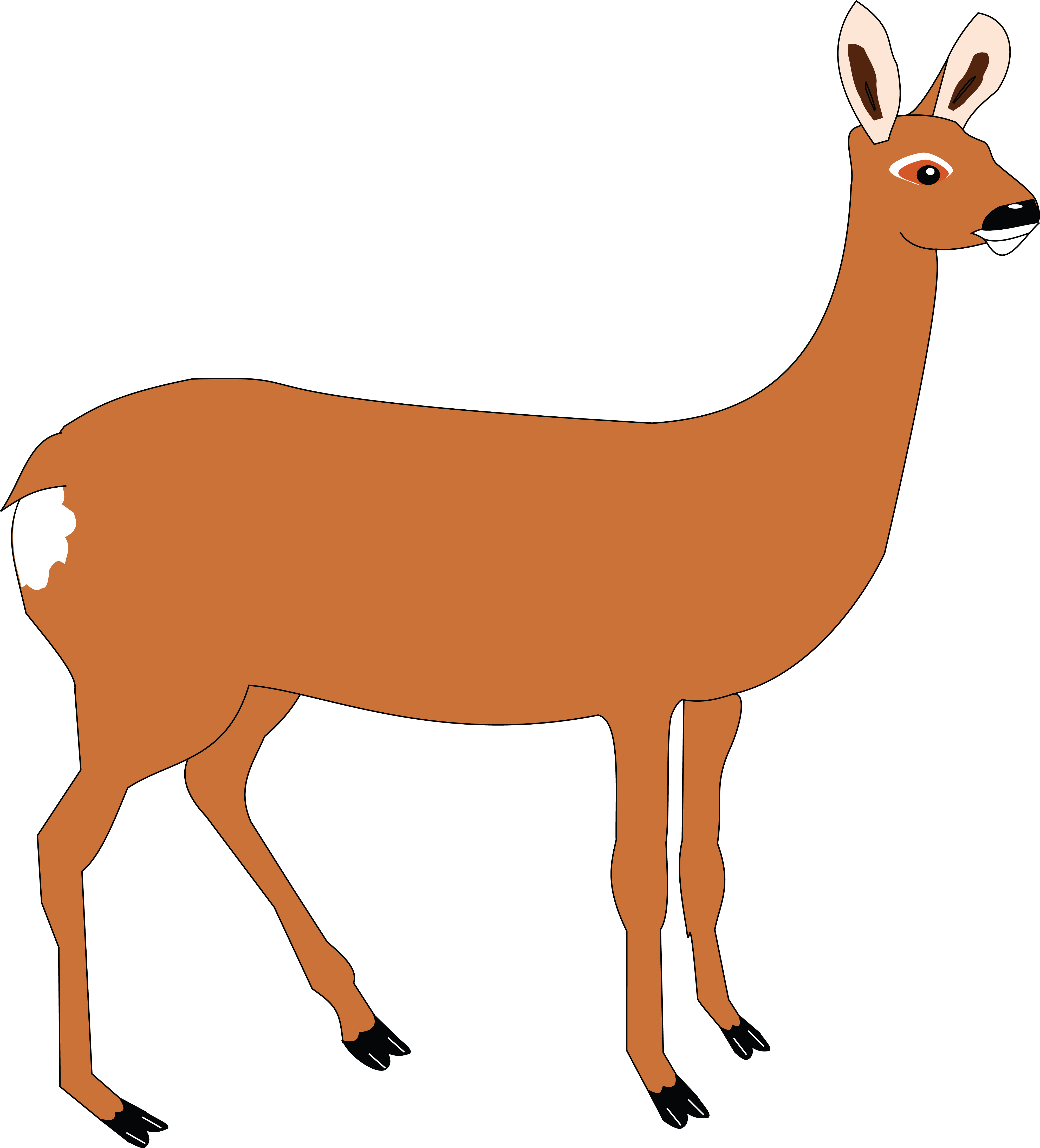 4000x4414 Free Clipart Of A Doe Deer