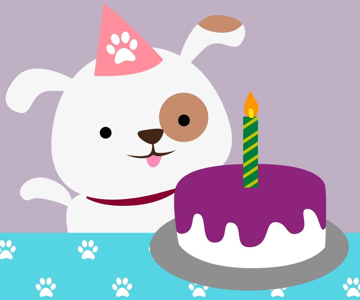1200x1000 Artistic Birthday Birthday Dog English Bulldogs Wearing Party Clos