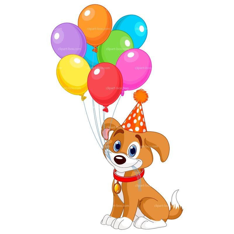 800x800 Clip Art Party Dogs
