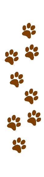 144x579 Paw Clipart Dog Tracks