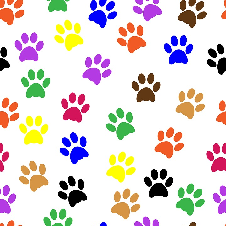 720x720 Collection Of Dog Paw Prints Clipart Buy Any Image And Use It