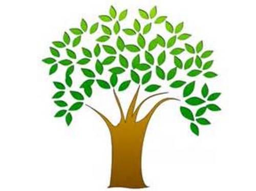 500x373 Free Tree Clip Art Amp Look At Tree Clip Art Clip Art Images