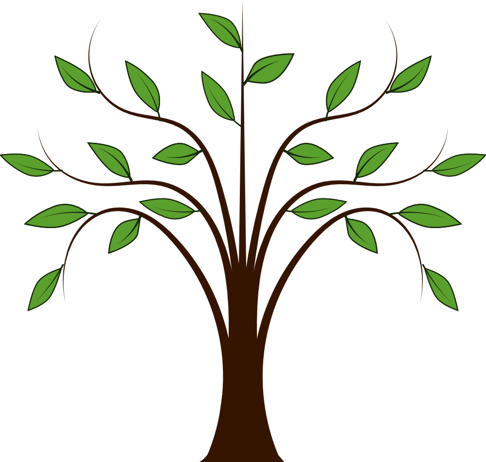 999x948 Tree Outline With Leaves Clipart
